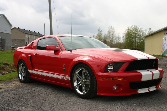 Shelby Red